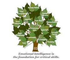 Highly Emotionally Intelligent People,