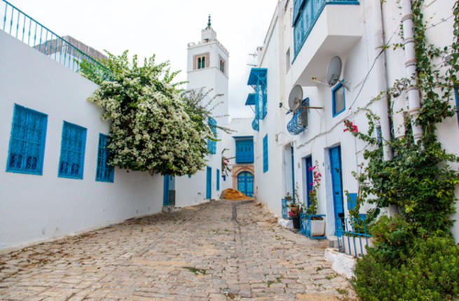 Decreasing Number of Sub-Saharan Students in Tunisia